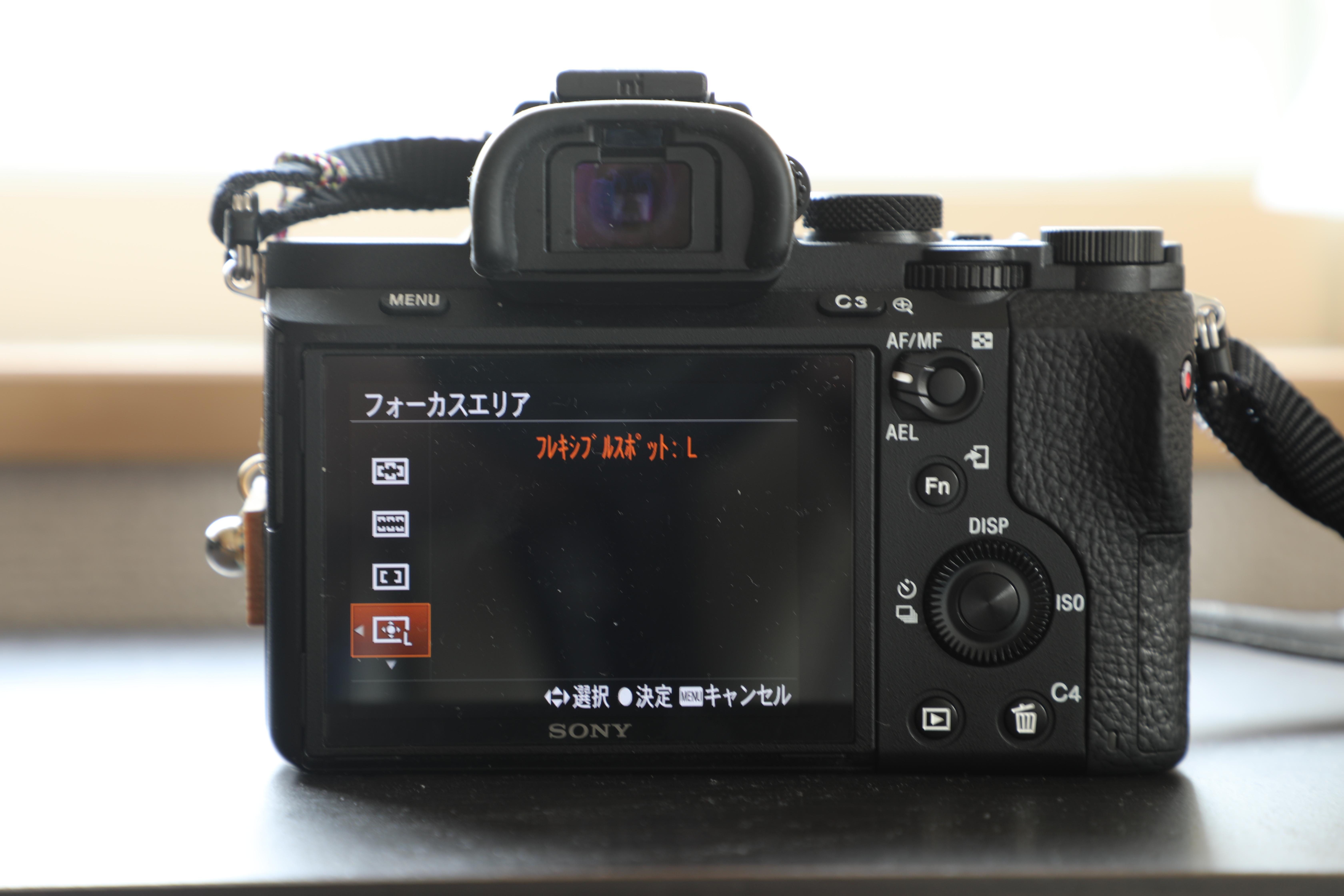 0Y4A9858